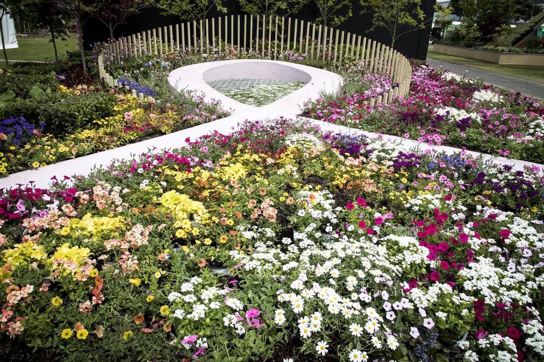 new zealand flower & garden show - the trusts arena